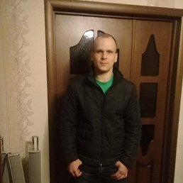 Марк, 28 лет, Бежецк