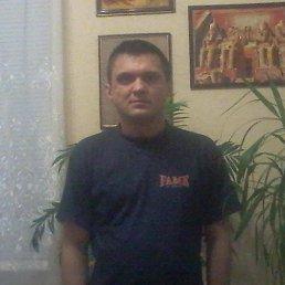 Сергей, 40 лет, Дзержинск