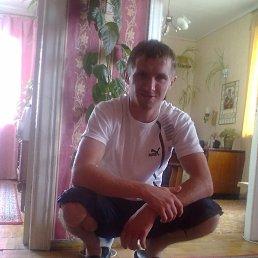 Борис, , Понинка