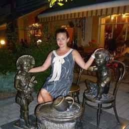 Саша, 29 лет, Гатчина