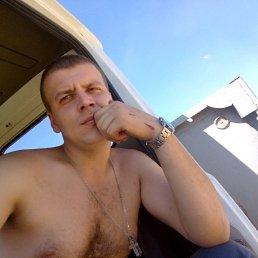 Илья, 24 года, Шуя