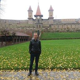 Александр, 28 лет, Боковская