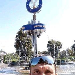 Сергей, Лебедин, 46 лет