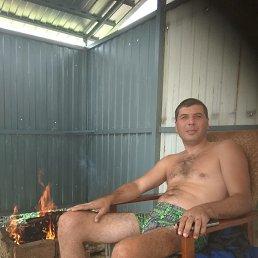 Дмитрий, 41 год, Дубовское