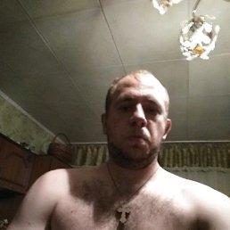 Дмитрий, 28 лет, Павлоград