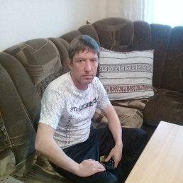 Алексей, 41 год, Брюховецкая