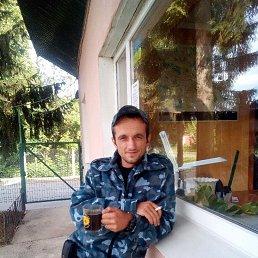 Aндрей, 30 лет, Жмеринка