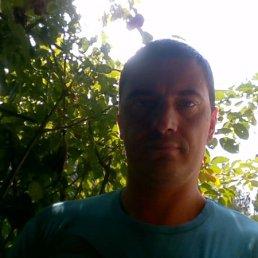 Dmitrij, Вильнюс, 38 лет