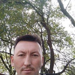 Радий, 47 лет, Видное