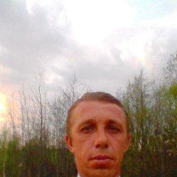 Роман, 43 года, Житомир