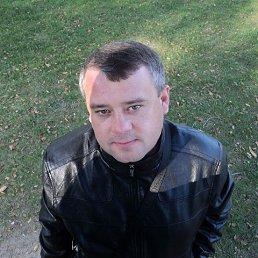 Андрей, 42 года, Кашары