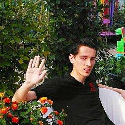 Віталік, 23 года, Бережаны