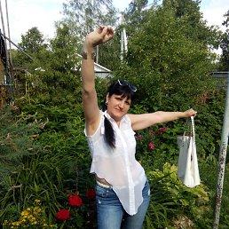 Галина, 55 лет, Бронницы
