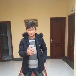 Артур, 20 лет, Новосибирск