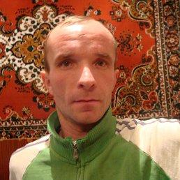 Алексей, 37 лет, Лохвица