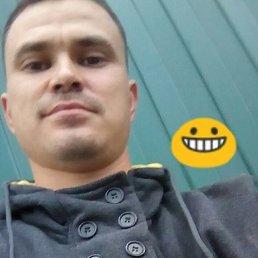 Алексей, Тальменка, 29 лет