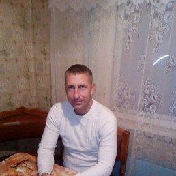 Владимир, 36 лет, Новопокровская