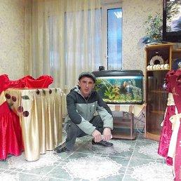 Вечеслав, 39 лет, Ребриха