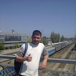 Владимир, 28 лет, Донское