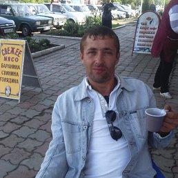Александр, 36 лет, Армавир