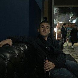Максим, 28 лет, Артемовский