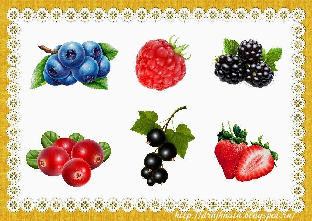 реальности существуют ягоды фрукты картинки для доу биографий