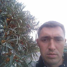 Фото Александр, Костанай, 32 года - добавлено 12 ноября 2018