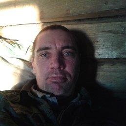 Николай, 41 год, Новошешминск