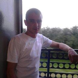 Костя, 29 лет, Кодыма