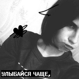 алина, 19 лет, Ярославль