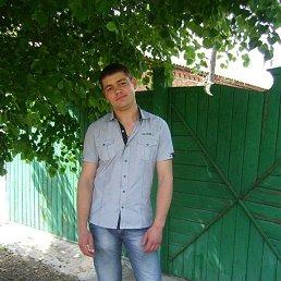 Миша, 29 лет, Константиновка