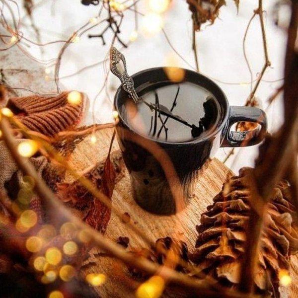боюсь с добрым ноябрьским утром осенне-зимние картинки фото внизу контейнеры