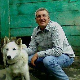 Андрей, 45 лет, Буинск