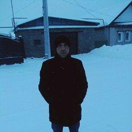Максим, 37 лет, Елабуга