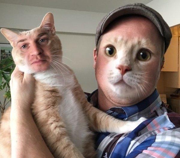 Фото кота с губами человека