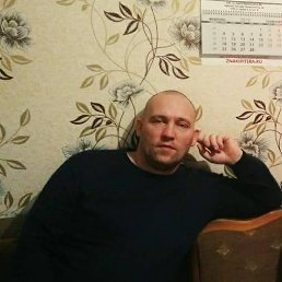 владислав, 40 лет, Сольцы