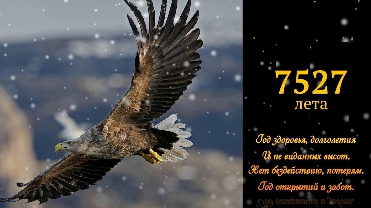 По славянскому календарю символ 2019 г. ПАРЯЩИЙ ОРЕЛ - олицетворение солнечного божества. Орел по ...