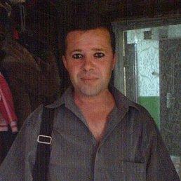 Иван, 48 лет, Ждановка