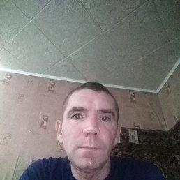 Николай, 44 года, Добринка