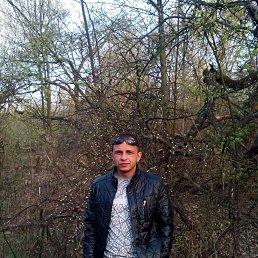 Саша, 33 года, Александрия