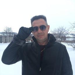 Александр, 38 лет, Белгород