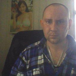 Николай, 39 лет, Пошехонье