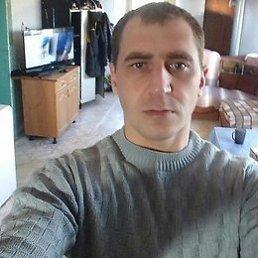 Фёдор, 31 год, Дедовичи