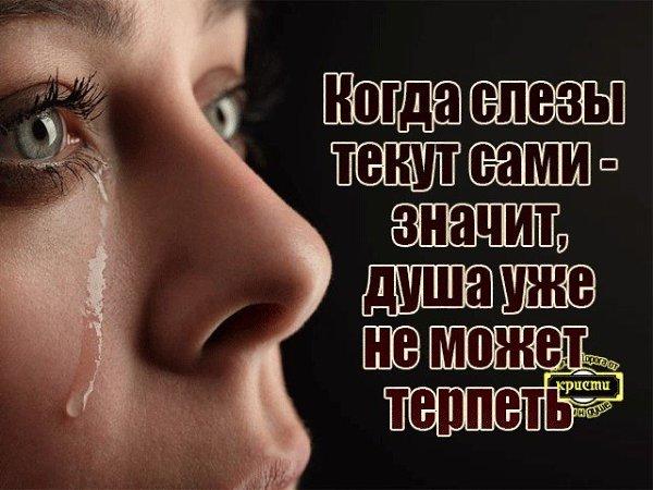 нашу открытки со слезами о любви обучает торгового