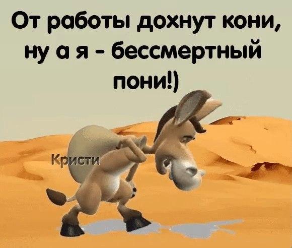 От работы кони дохнут картинки смешные, надписями самый картинка