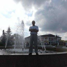 Александр, 44 года, Весьегонск