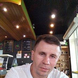 Yuriy, 44 года, Ковель