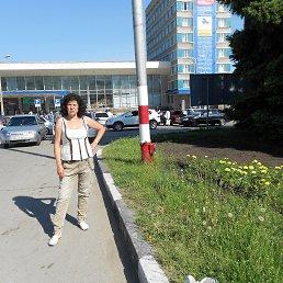 Анна, 64 года, Солнечногорск