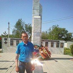 Фото Сергей, Волгоград, 53 года - добавлено 10 мая 2019