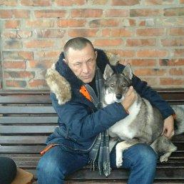 Алексей, , Бахмач